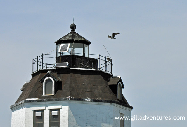 lighthouse on Chesapeake Bay, near the Magothy river.