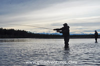 fly casing for silver salmon on the Yentna River, Alaska