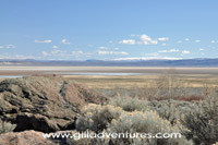Alvord Desert from Pike Creek