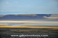 view across the alvord desert