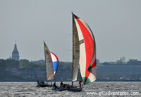 sailboat races on Chesapeake Bay, Annapolis, Maryland