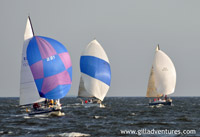 Sailboat races from Annapolis on Wednesday nights