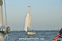 schooner on chesapeake bay