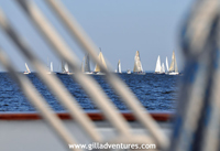 boat races from a schooner on the chesapeake