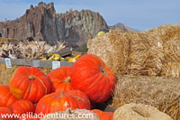 Family Adventure to Smith Rocks from Central Oregon Pumkin Co