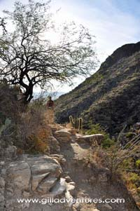 Finger Rock trail Tucson