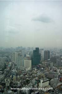 View of Tokyo, Japan from the Mori Tower with our family