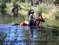 Canal crossing at Rock Springs Dude Ranch