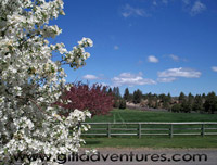 Spring at Rock Springs Guest Ranch