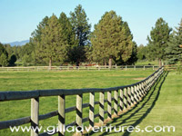 Rock Springs Guest Ranch Fence