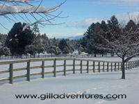 Rock Springs Guest Ranch in snow