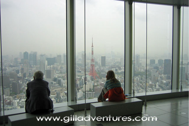 View looking back at Tokyo Tower from the Mori Tower in Rappongi