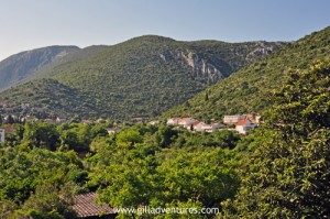 The hills of the Pelješac peninsula, Croatia, home of golden jackals